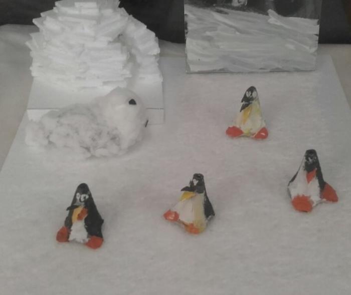 Arktik i Antarktik