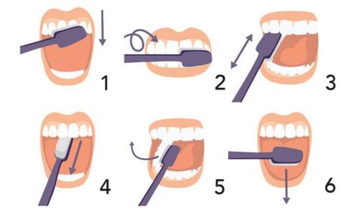 Higijena usne šupljine i pravilno četkanje zubi