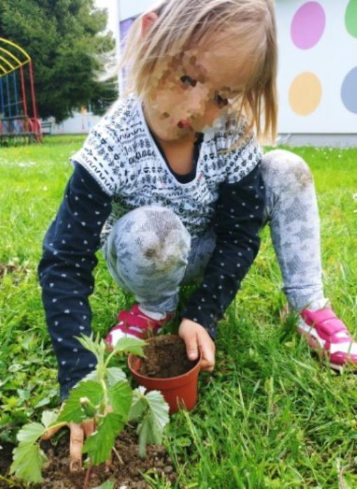 Djeca  skupine 'Kućice' uređuju vrtićko dvorište