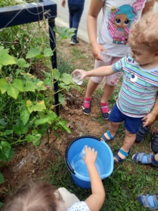 LJETNI RAD: Ekološke aktivnosti tijekom ljeta